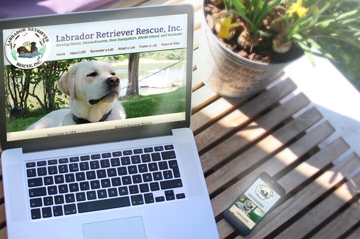 Labrador Retriever Rescue website