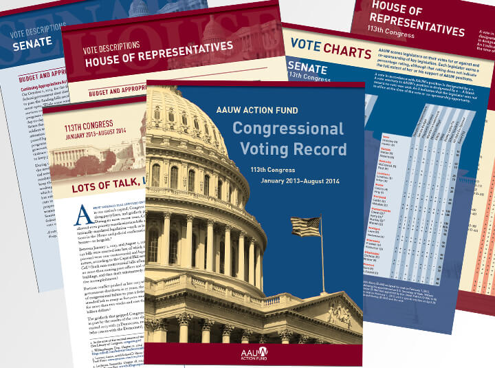 Congressional voting record report
